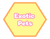 exotic pets.png