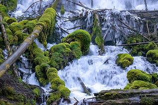 ChangeNFocus-Oregon-ClearwaterFalls.jpg