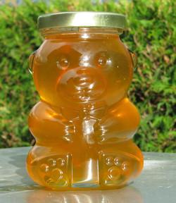 Honey bear 13 oz.