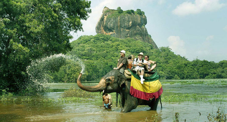 Elephant rides with Sigiriya fortress at the back