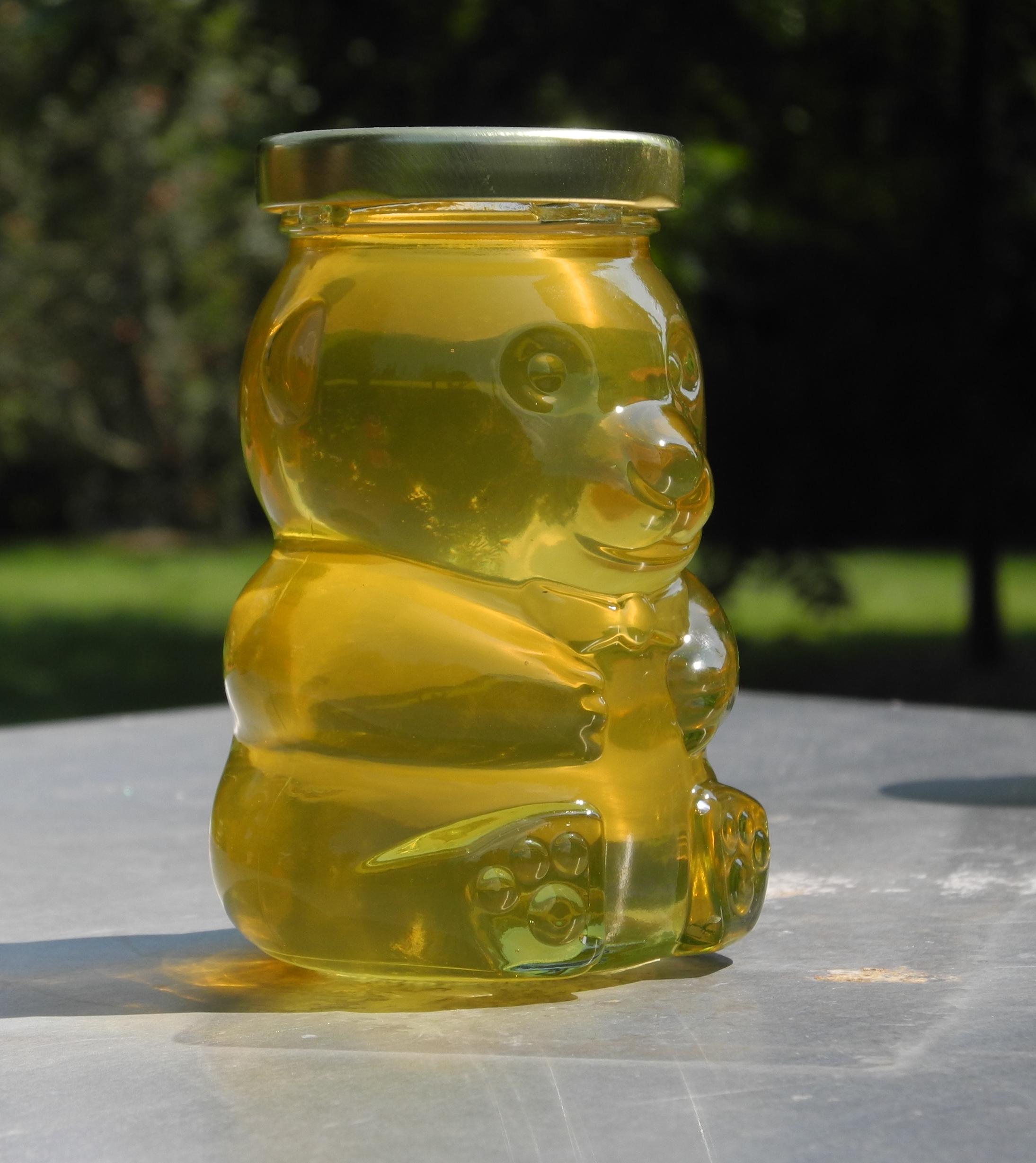 Early season Honey Bear