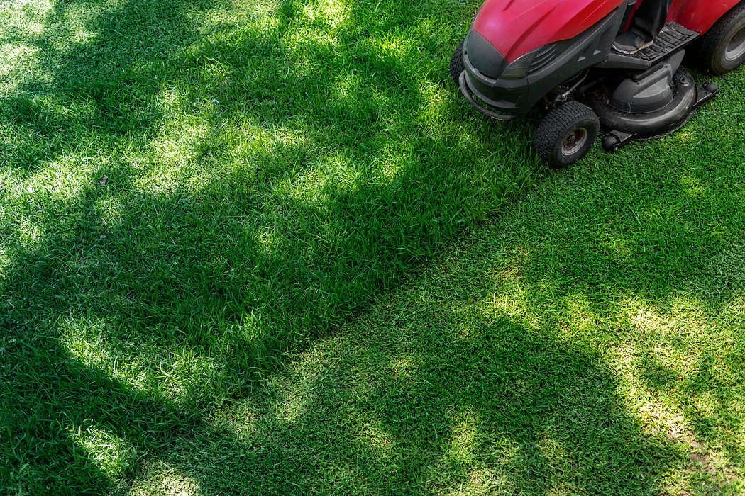 Top down above view of professional lawn mower worker cutting fresh green grass with landc
