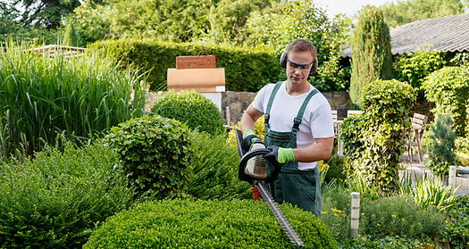 Fantastic lawn and gardening service in St. Augustine, FL