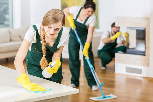 Group of friends as a professional clean