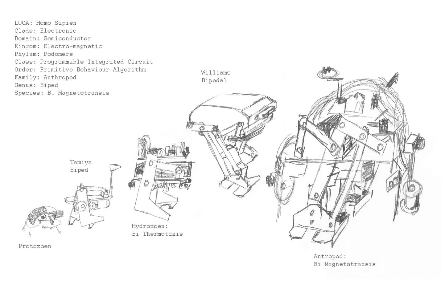 Field Studies: Hopper Evolutionary Diagram