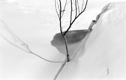 Snow series