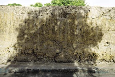 The Walls #54