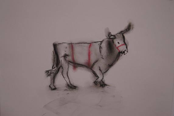 Cretan Bull (series of 28)