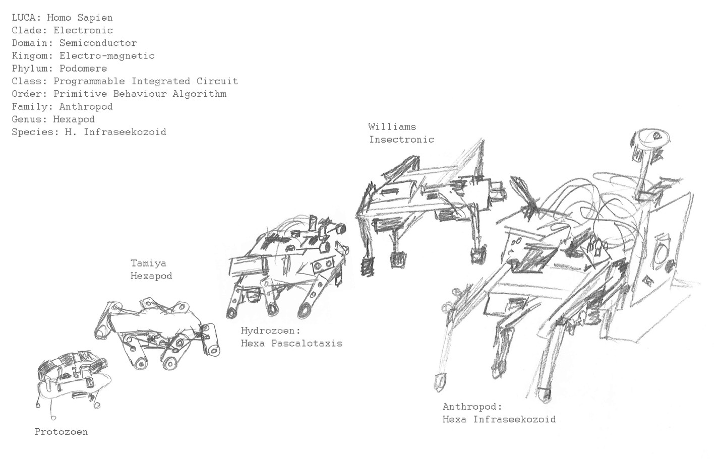 Field Studies: Hexapod Evolutionary Diagram