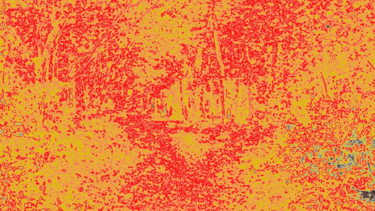 Shroud-Fontainebleau 2.1