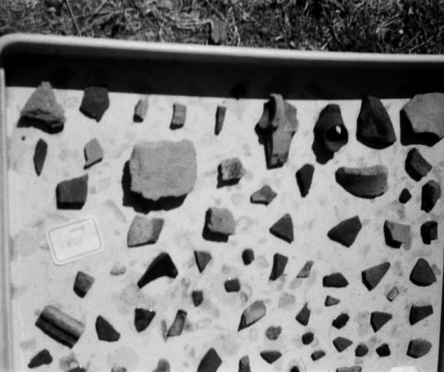 Ensérune, Nettoyage de céramiques, septembre 2019