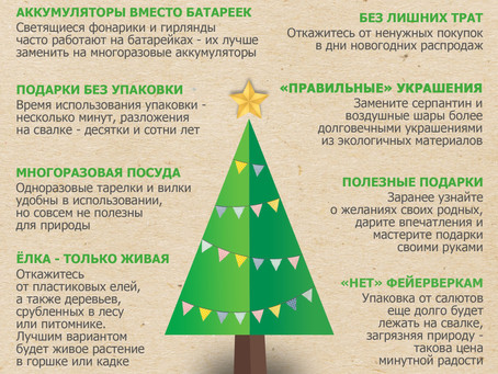 Как провести новогодние праздники без вреда для природы? 🎄