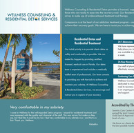 TMC-Wellness Sales Sheet