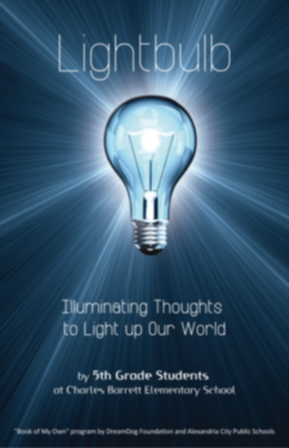 DD-Lightbulb.jpg