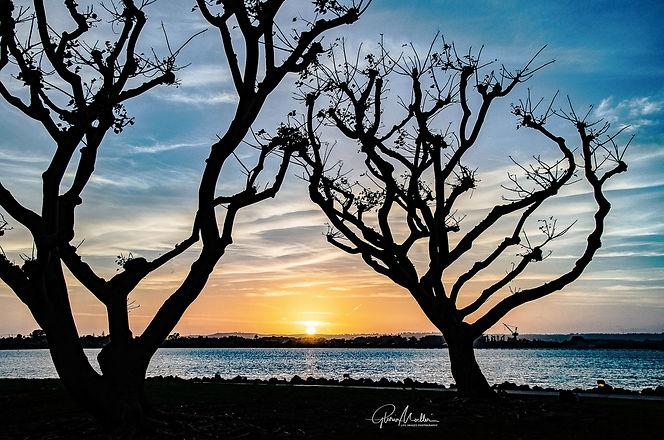 Moeller 2 - Sunset over San Diego Bay.jp
