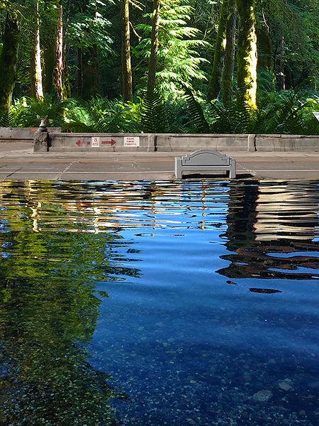Howlett-Water_in_the_Woods-for-web.jpg