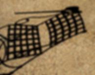 Corte Fallen Cane.jpg