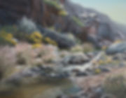 Roper Palm Canyon (2).jpg