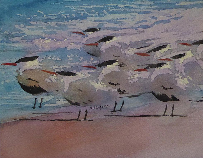 Kingery Terns at Attention.jpg
