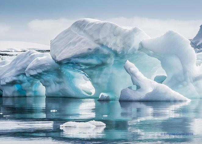 Corte Antarctica.jpg