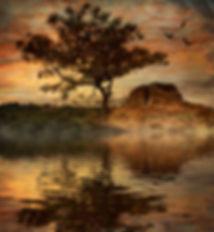 Brock_Torrey Pines Sunset by beverly bro