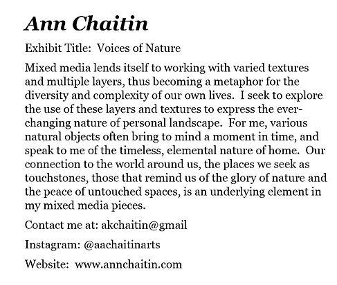 Chaitin Statement.jpg