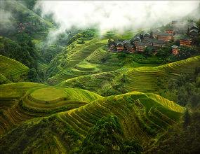 Everds_landscape_Plantation_ Guilin Chin
