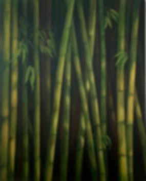 Tirado Bamboo-2.jpg