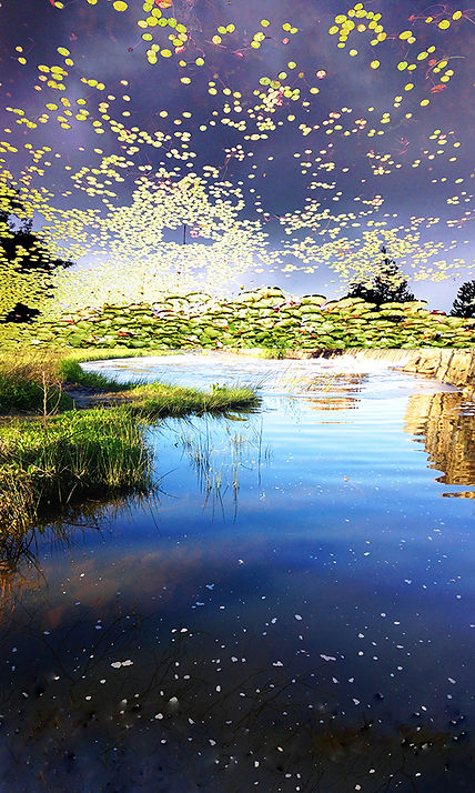 Howlett-Lucy_in_the_Sky-for-web.jpg