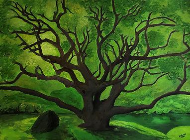 Kilgore_greenery_Live Oak2.jpg