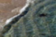 Caulfield_Green Shoreline.jpg