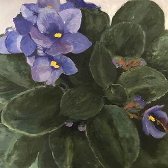 Kilgore_floral_Connie's African Violets.JPG