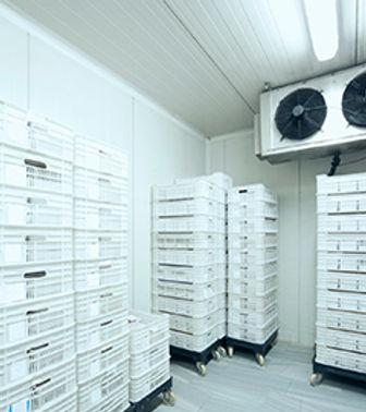 Taylor Storage and Refridgeration