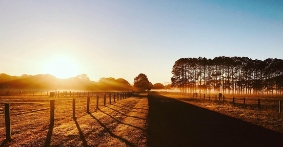 The Pocket Road Sunrise