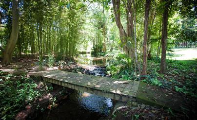 Bridge over Creek - Sanctuary in The Pocket Garden