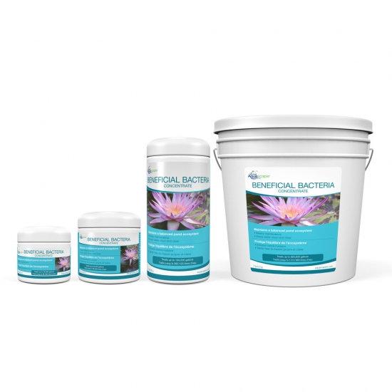 Beneficial Bacteria Concentrate