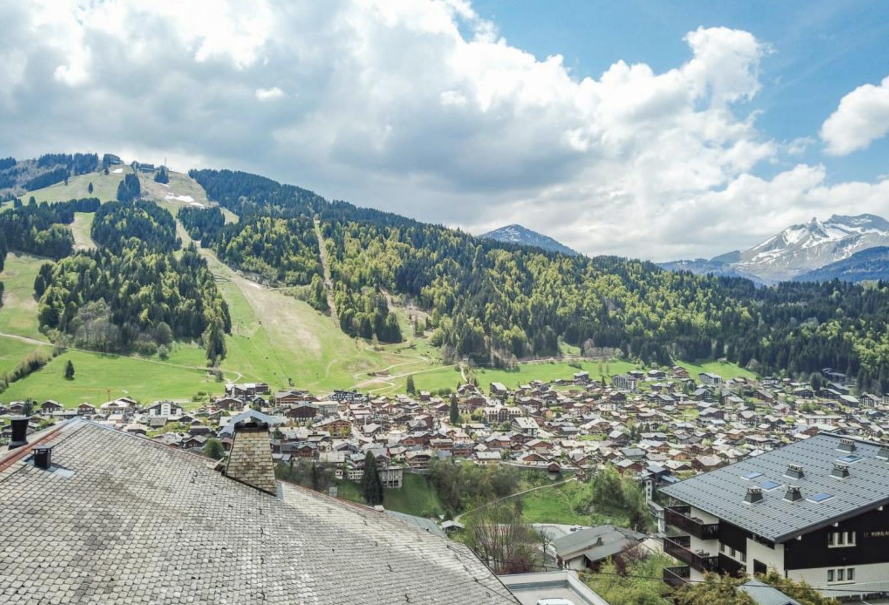 Купить шале рядом с Женевским Озером