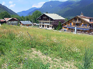 Land for Sale in Essert-Romand near Morzine | The French Alps, Haute-Savoie, France | Star Leman Immobilier Buyer's Agent, Property Finder and Real Estate Consultant