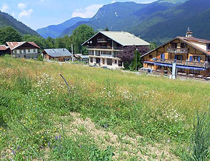 Land for Sale in Essert Romand near Morzine | Real Estate in the French Alps, Haute-Savoie, France | Star Leman Immobilier Buyer's Agent, Property Finder and Real Estate Consultant