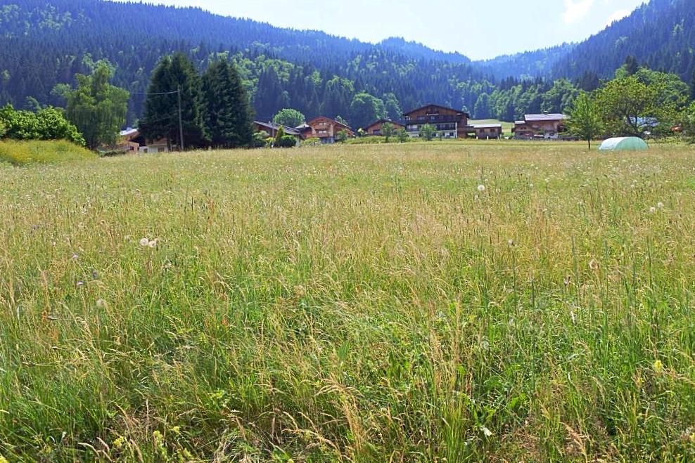 Vente terrain Alpes françaises