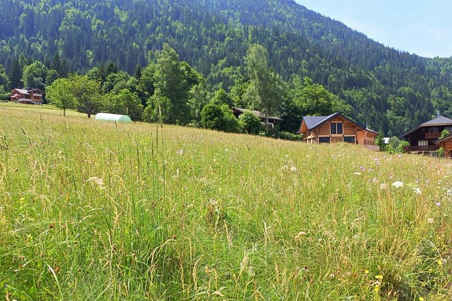 Vente terrain Essert Romand Morzine