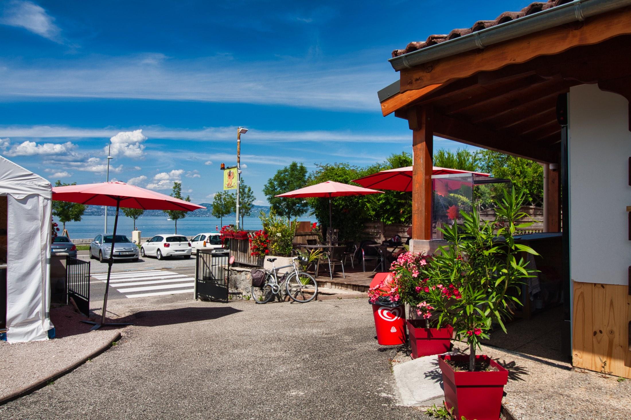 купить коммерческую недвижимость женевское озеро франция