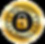 site-seguro-300x293.png