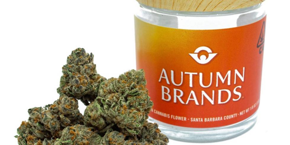 Autumn Brands Savings!