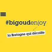 Logo BigoudenJoy.jpg