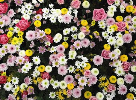 Den blomstertid nu kommer...