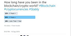 How long have you been in the blockchain-crypto world?