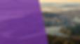 Screen Shot 2020-07-02 at 1.42.44 AM.png
