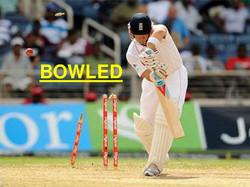 field-layout-cricket3