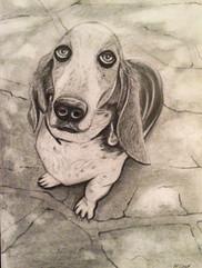 Drawing: Bubba